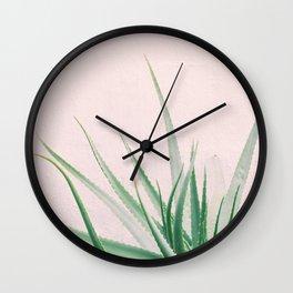 Minimal Aloe on pink background - Aloe Photography Wall Clock