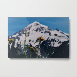 Mountain view suite part one Metal Print