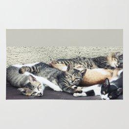 Cats in Tokyo Rug