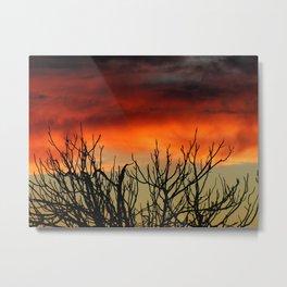 Burning branches Metal Print