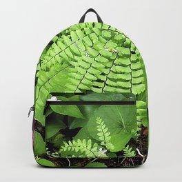 Maidenhair Fern, Adiantum Pedatum, And Friends Backpack