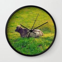Cattle Wall Clock