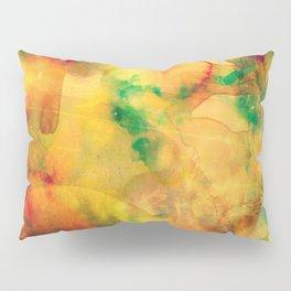 Fume Color Splash 05 Pillow Sham