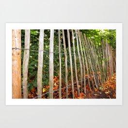 Ramshackle Fence Art Print
