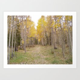 Now Theres a Campsite! Art Print