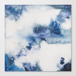 I see blue Canvas Print