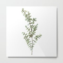 Baby Blue Eucalyptus Watercolor Painting Metal Print