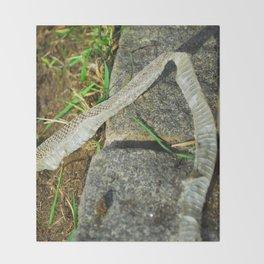 Snake Skin Throw Blanket