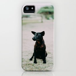 Dog by Pesce Huang iPhone Case