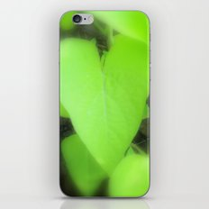 The Heart of Mother Earth iPhone & iPod Skin