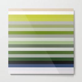 Les lignes de couleurs 02 Metal Print
