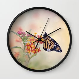 Monarch Butterfly  feeding on Tropical milkweed Wall Clock