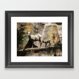 mama and its baby Framed Art Print