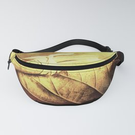 Autumn Spice Fanny Pack