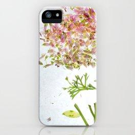 Botanical Blueprints iPhone Case