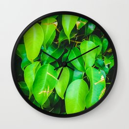 closeup green leaves background Wall Clock