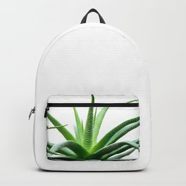 Succulents - Haworthia attenuata - Plant Lover - Botanic Specimens delivering a fresh perspective Backpack