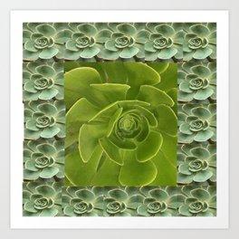 COLLAGE GRAY-GREEN  SUCCULENTS  MODERN DESIGN Art Print
