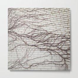 vine on brick Metal Print