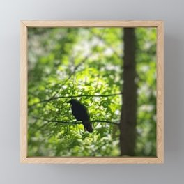 Black Bird Summer Green Tree Framed Mini Art Print