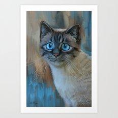 Looking for Love - sad kitty cat portrait Art Print