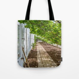 The Lost Gardens of Heligan - The Peach House Tote Bag