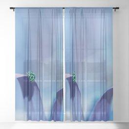 Lady Blue Sheer Curtain