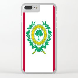 Flag of Raleigh Clear iPhone Case