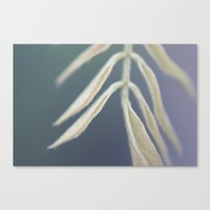 Fuzzy Ears Canvas Print