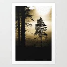 This day Art Print