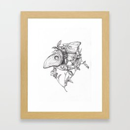 Moon Moth Framed Art Print