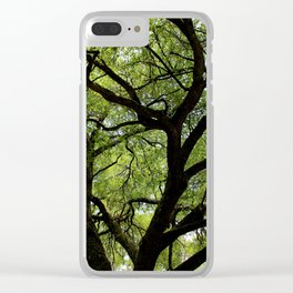 Oak Of Life Clear iPhone Case