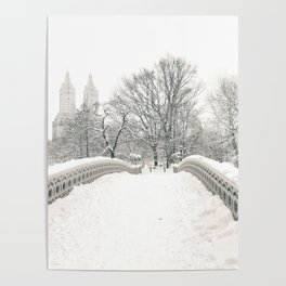 Winter Snow in New York City Poster