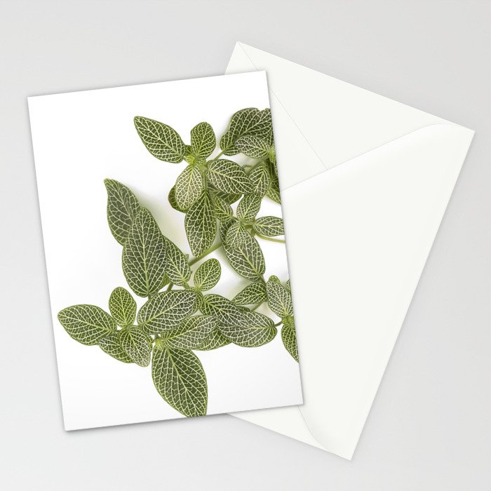 Nerve Plant Stationery Cards