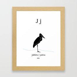 J/Jabiru Framed Art Print