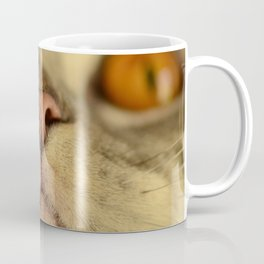 Derpy Macro Cat Coffee Mug