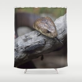 Mulga Brown Snake Shower Curtain
