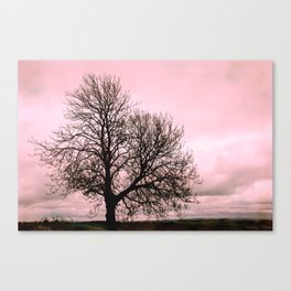Rosy Sunset Canvas Print