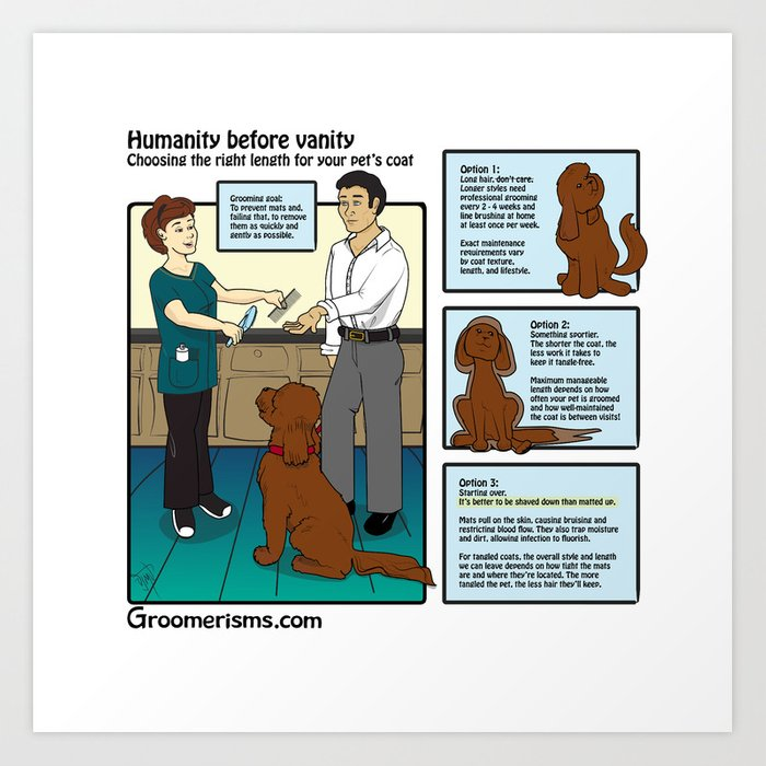 Maintenance Pet Grooming vs Matted Shaves Art Print