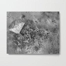 Ray Roberts 01 Metal Print