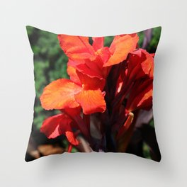 And There You Have It Throw Pillow