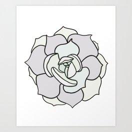 Succulent Art Echeveria Succulent Art Print