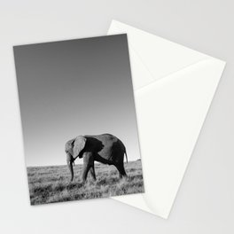 Lone female elephant walking along African savanna Stationery Cards