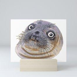 Seal Face Funny Pinnipeds Afraid Mistake Caught Act Mini Art Print