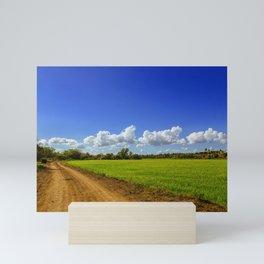 Rice Field Mini Art Print