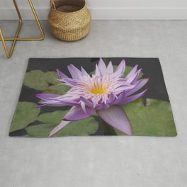 Rosy lavender water lily Rug