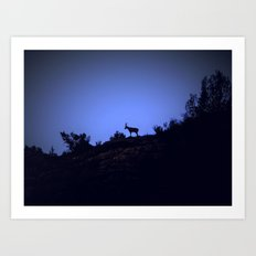 Sunset on the forest Art Print