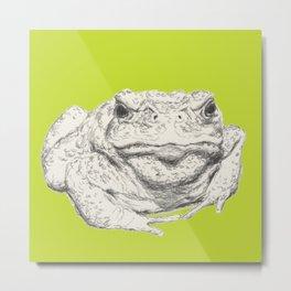 Toad Face Metal Print