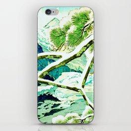 The Winter Green iPhone Skin