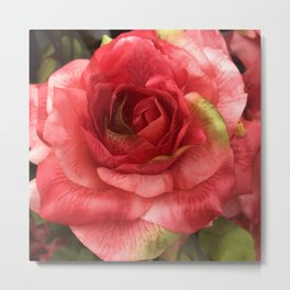 Single Silk Red Rose Macro Photo Metal Print